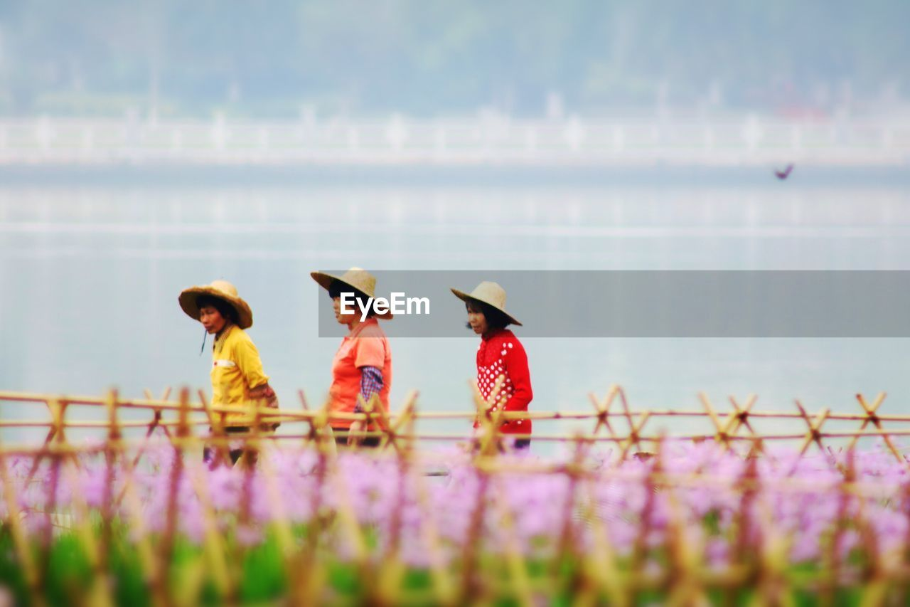 nature, beauty in nature, flower, growth, outdoors, asian style conical hat, focus on foreground, plant, field, day, real people, women, fragility, sky, freshness, mammal