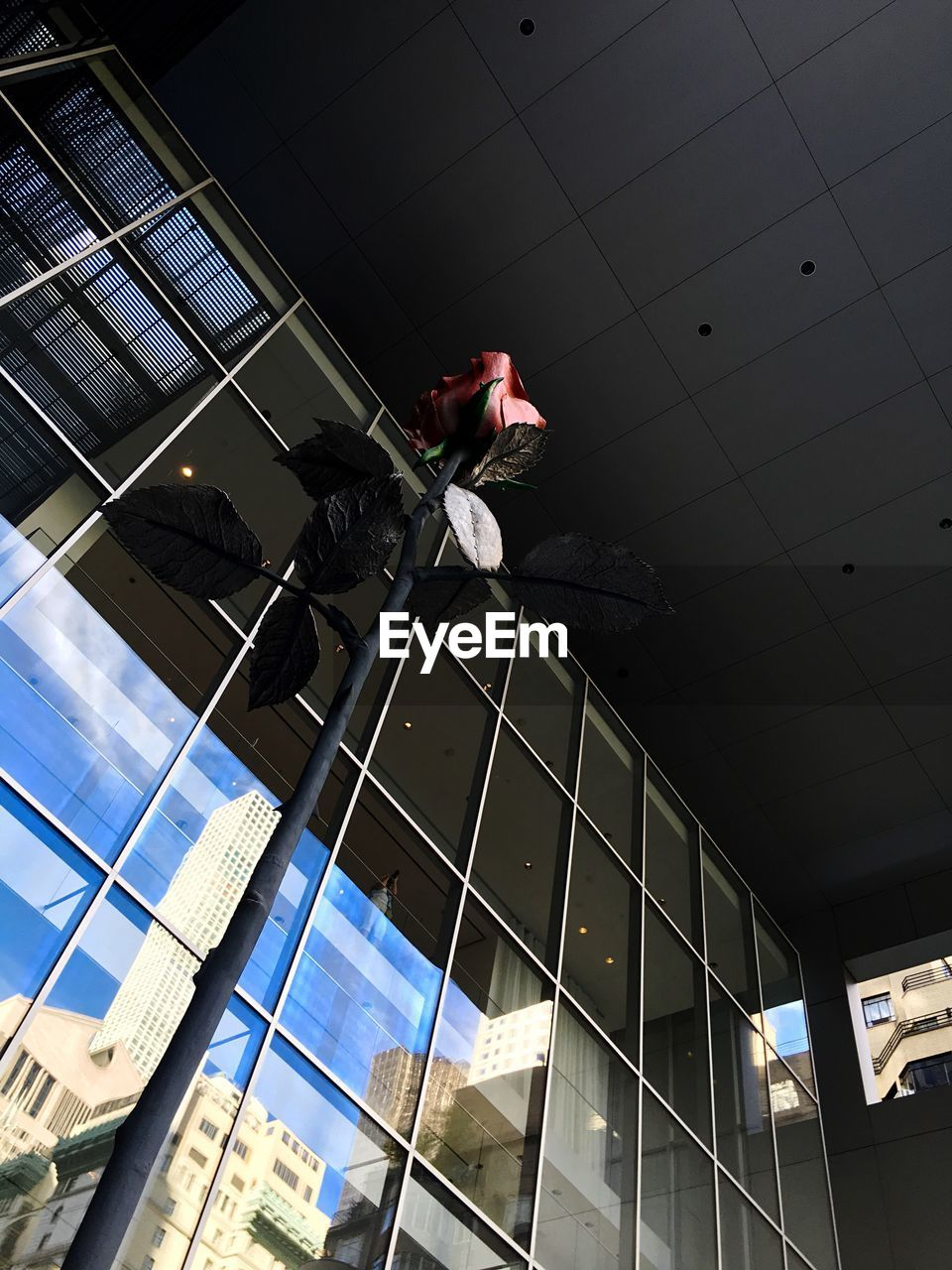 architecture, low angle view, built structure, real people, building exterior, danger, window washer, risk, cleaning, occupation, working, men, day, outdoors