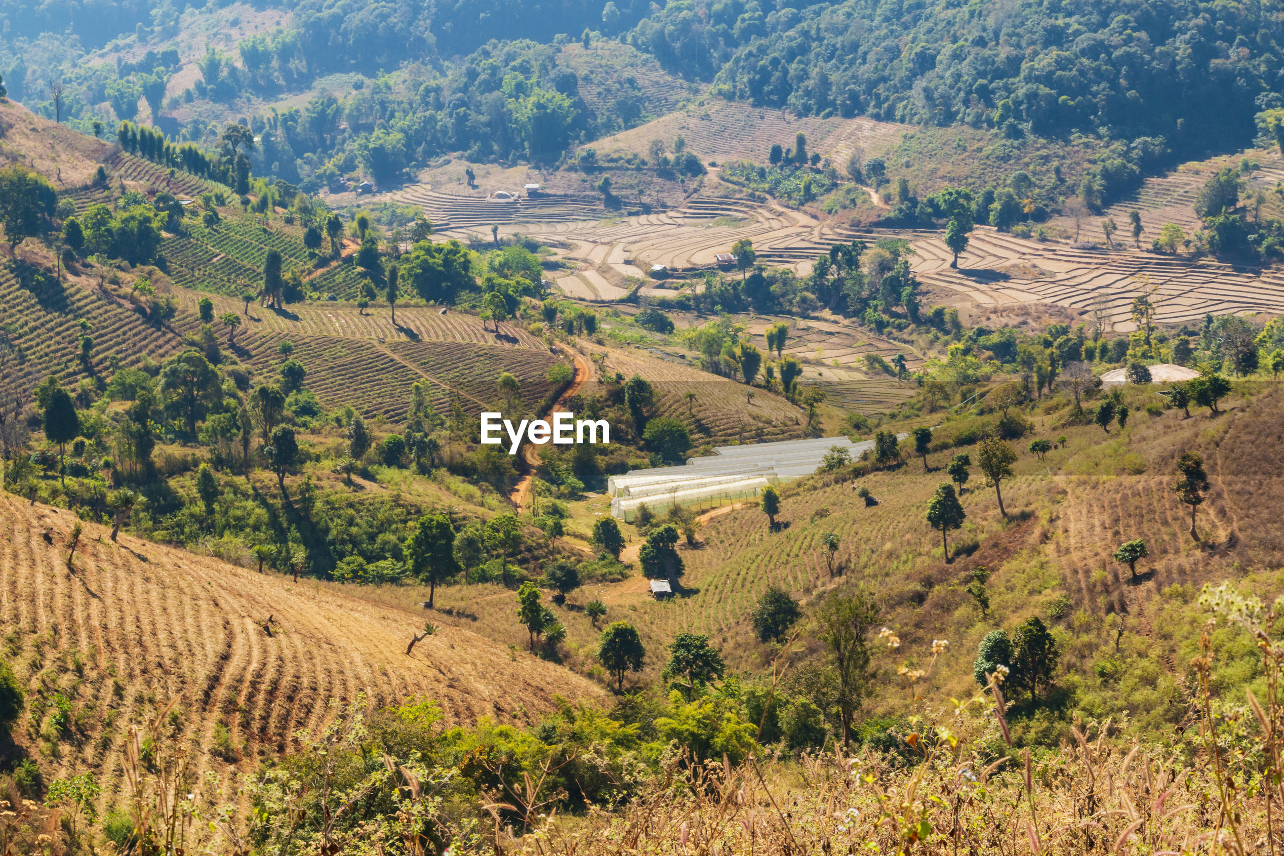 Farmland in the valley mae tho national park, chiang mai, thailand