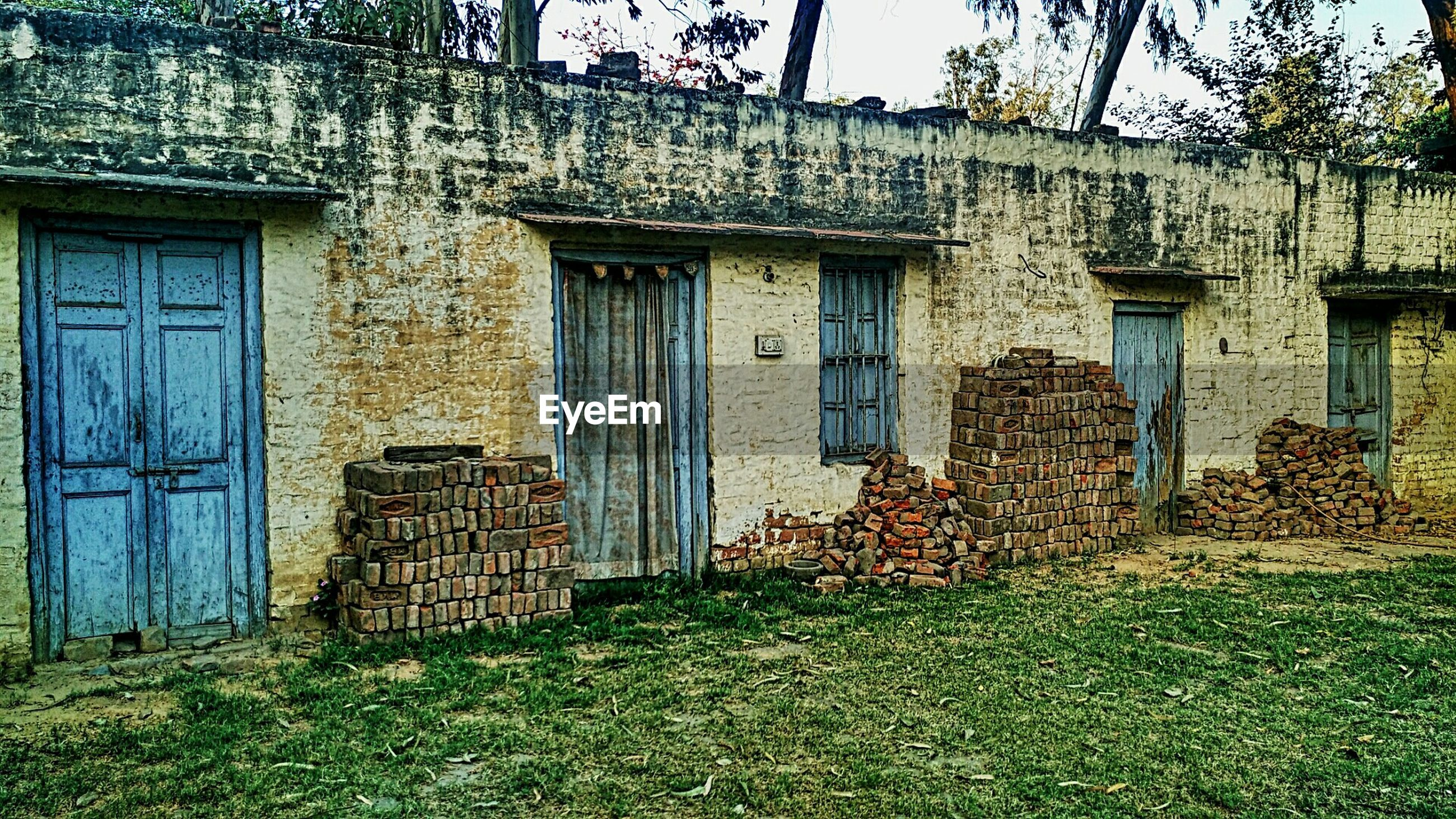 building exterior, architecture, built structure, window, house, grass, residential structure, plant, residential building, door, growth, building, day, green color, facade, outdoors, no people, old, tree, exterior