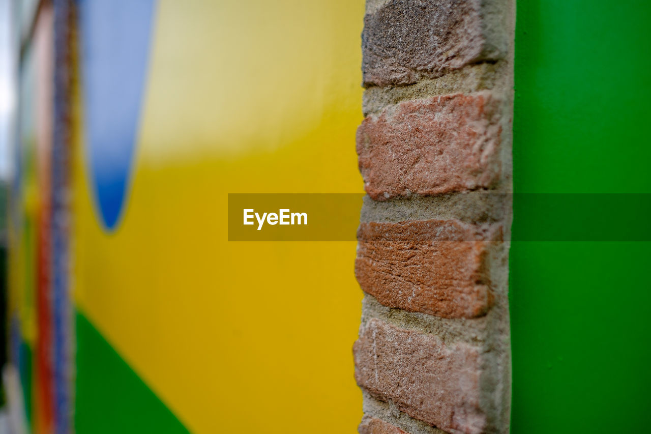 close-up, yellow, no people, multi colored, day, outdoors