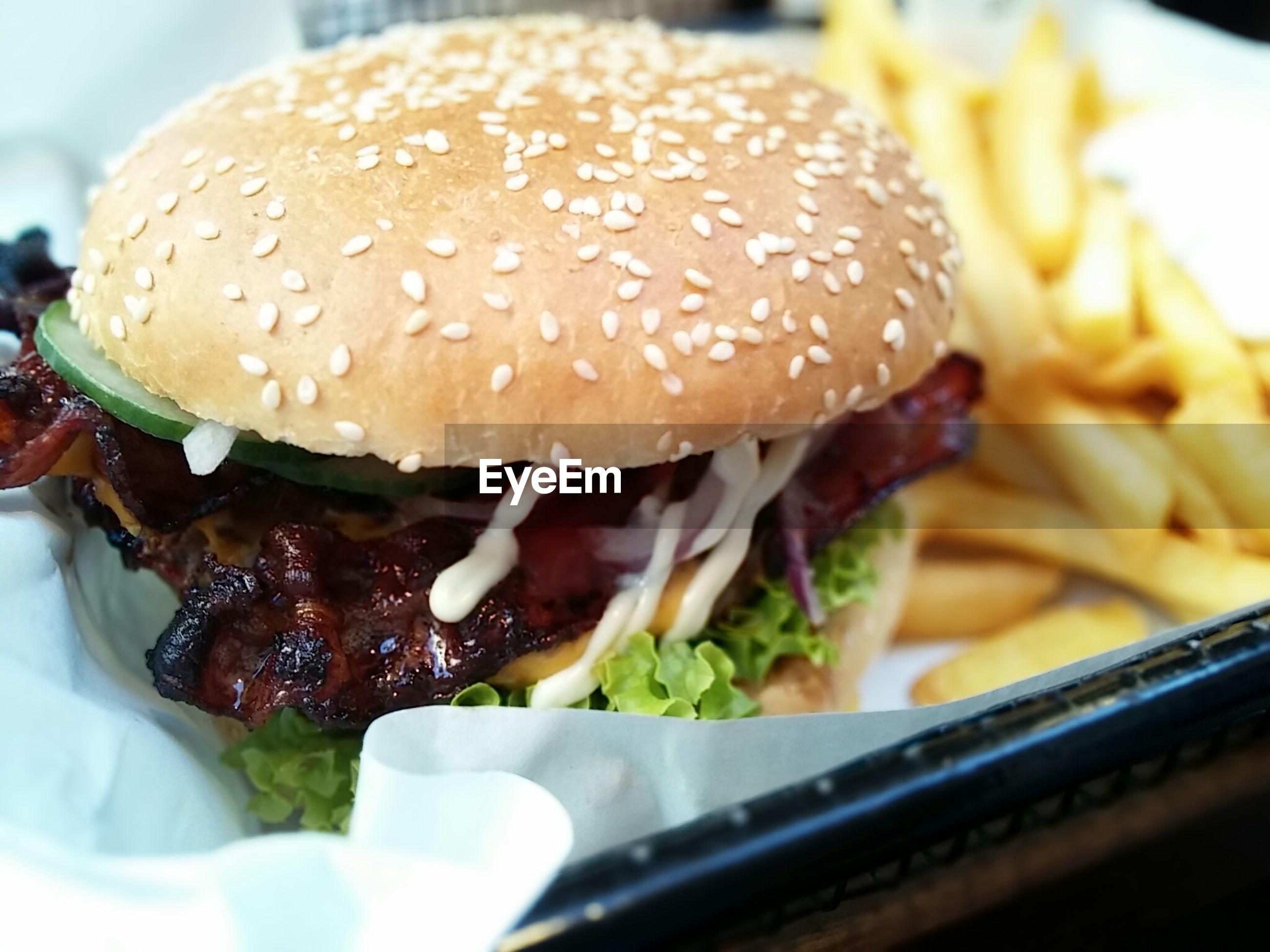 Detail of hamburger and fries