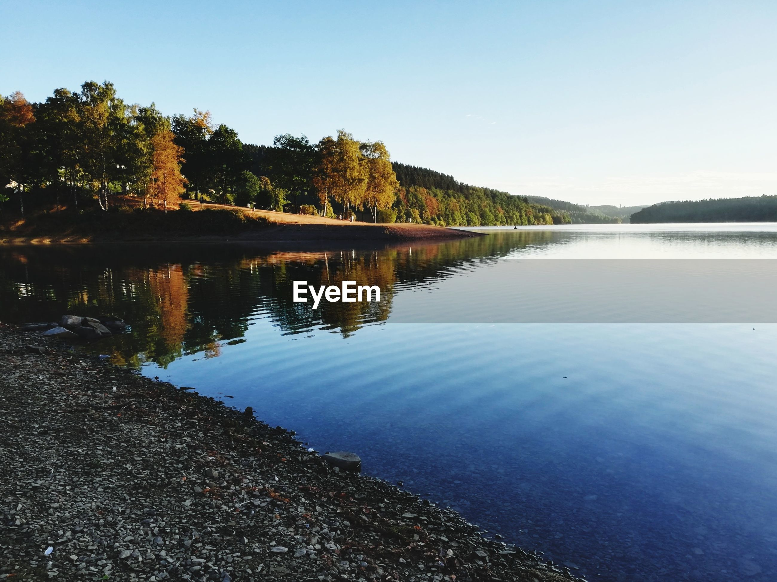 SCENIC VIEW OF LAKE BY TREES AGAINST CLEAR SKY