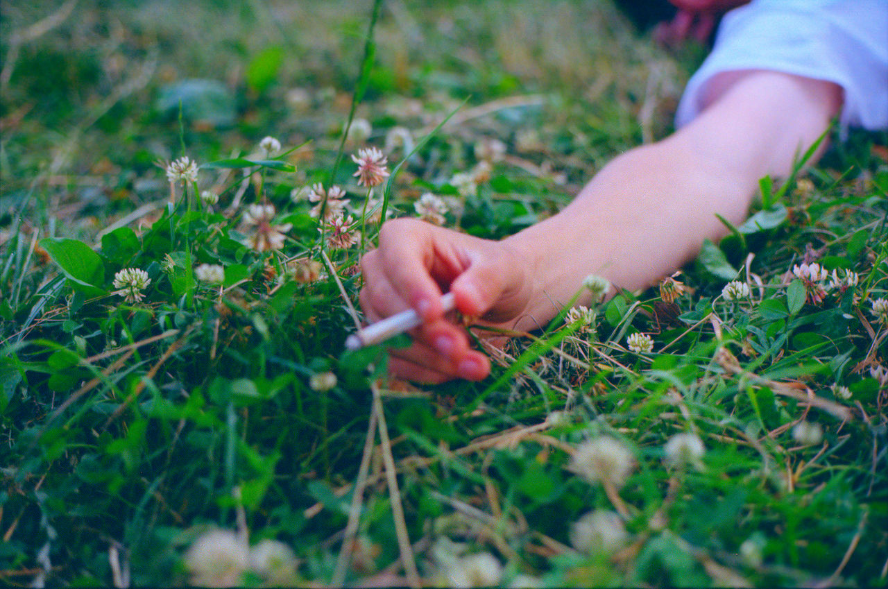 Cropped Image Of Hand Holding A Cigarette Lying On Grass Field