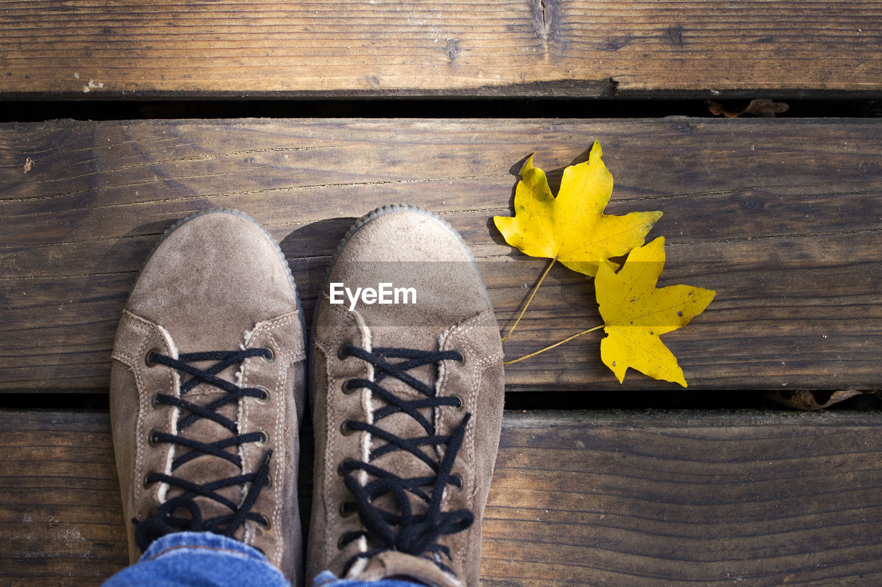 wood - material, yellow, leaf, plant part, close-up, shoe, table, high angle view, directly above, nature, flower, plant, flowering plant, no people, day, still life, indoors, autumn, wood, pair, change, leaves, maple leaf, softness