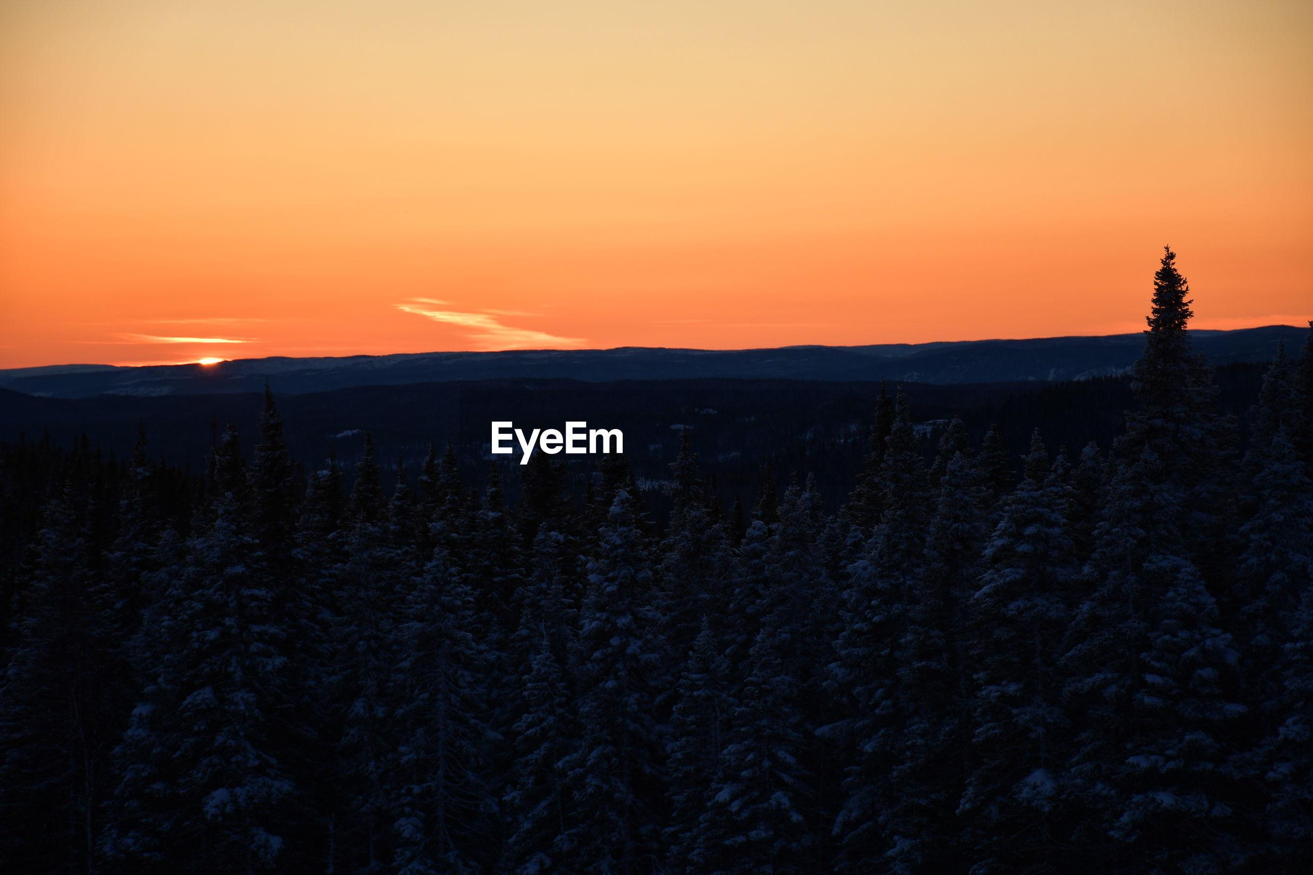 SILHOUETTE LANDSCAPE AGAINST ROMANTIC SKY AT SUNSET