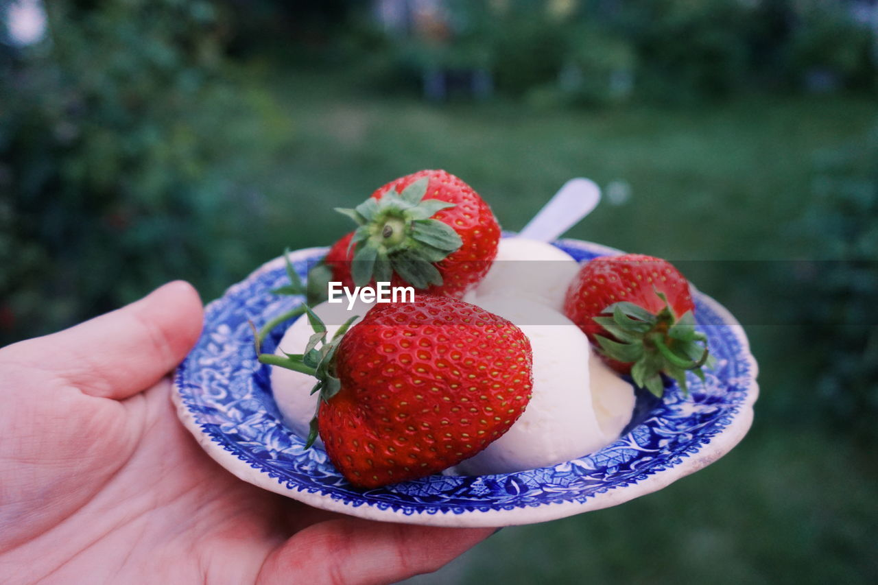 Cropped Hand Holding Strawberries In Plate