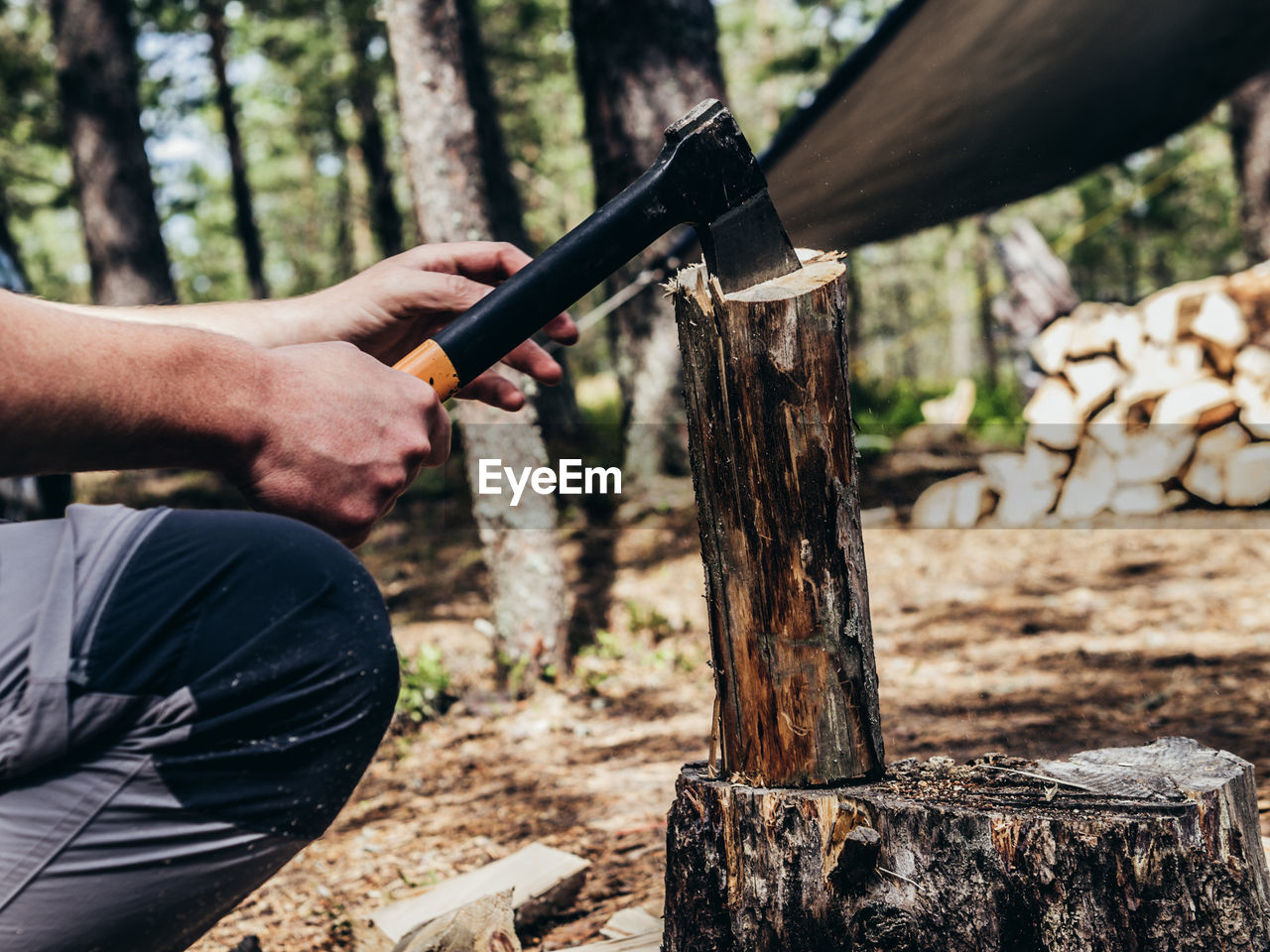 Midsection of man cutting wood in forest