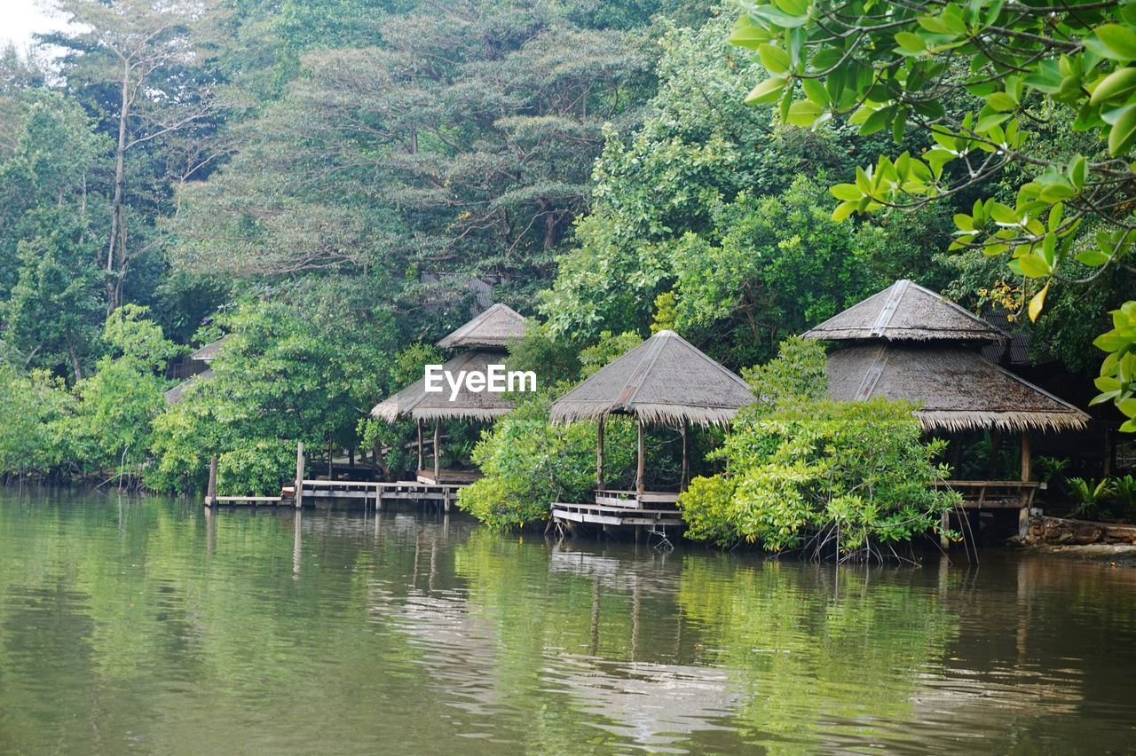 water, nature, tree, outdoors, tranquility, day, no people, stilt house, built structure, beauty in nature, tranquil scene, scenics, lake, architecture, plant, forest, building exterior, mountain