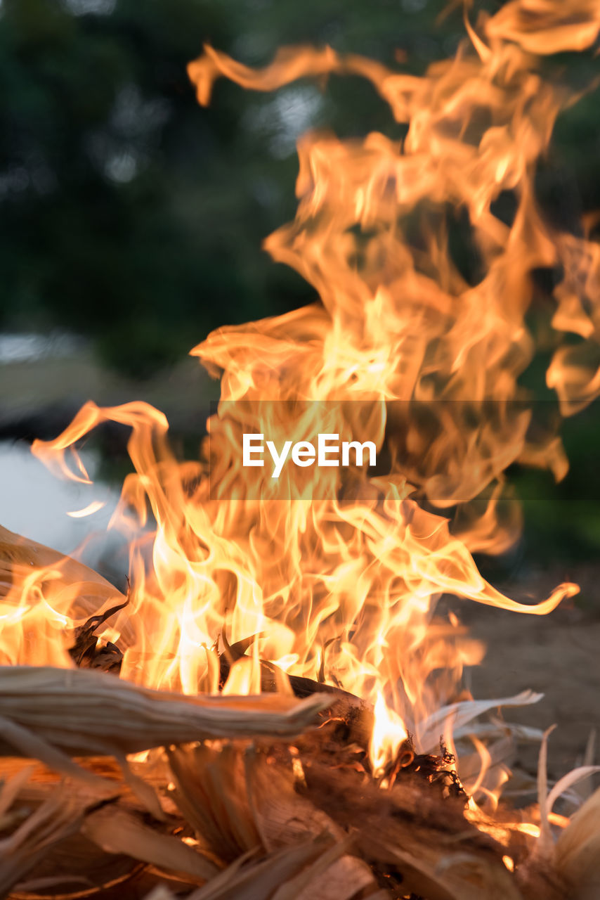 burning, fire, heat - temperature, flame, fire - natural phenomenon, orange color, glowing, motion, nature, no people, log, firewood, wood - material, wood, long exposure, close-up, night, fireplace, outdoors, bonfire, campfire