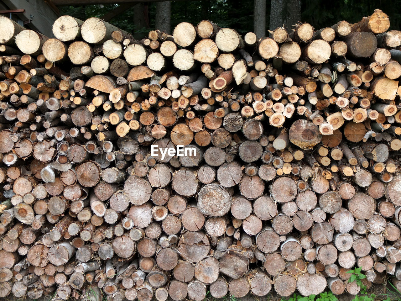 log, wood, stack, timber, firewood, lumber industry, large group of objects, forest, tree, abundance, deforestation, wood - material, full frame, no people, nature, day, backgrounds, heap, fuel and power generation, environmental issues, outdoors, woodpile