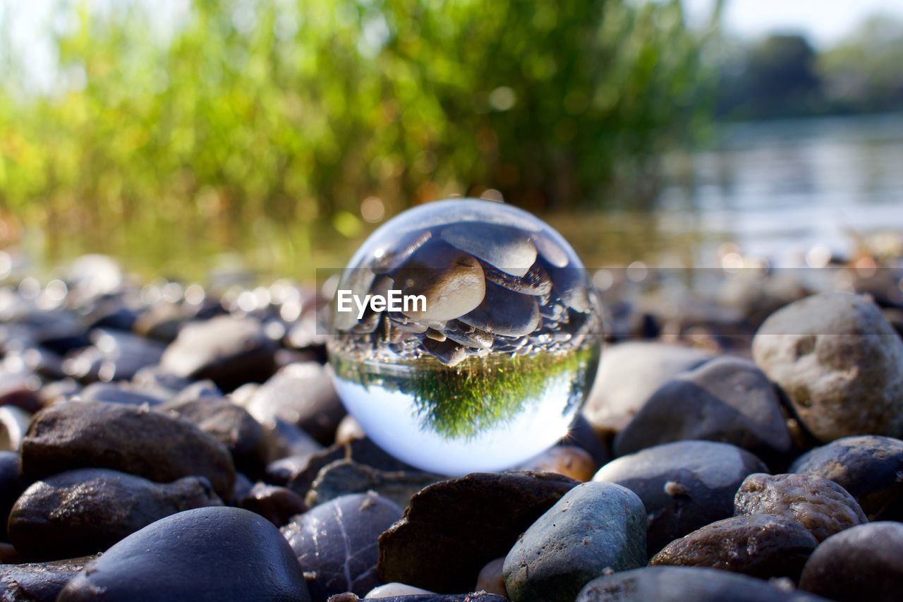 sphere, day, rock, close-up, focus on foreground, nature, solid, crystal ball, no people, reflection, plant, ball, water, rock - object, stone, outdoors, transparent, pebble, selective focus