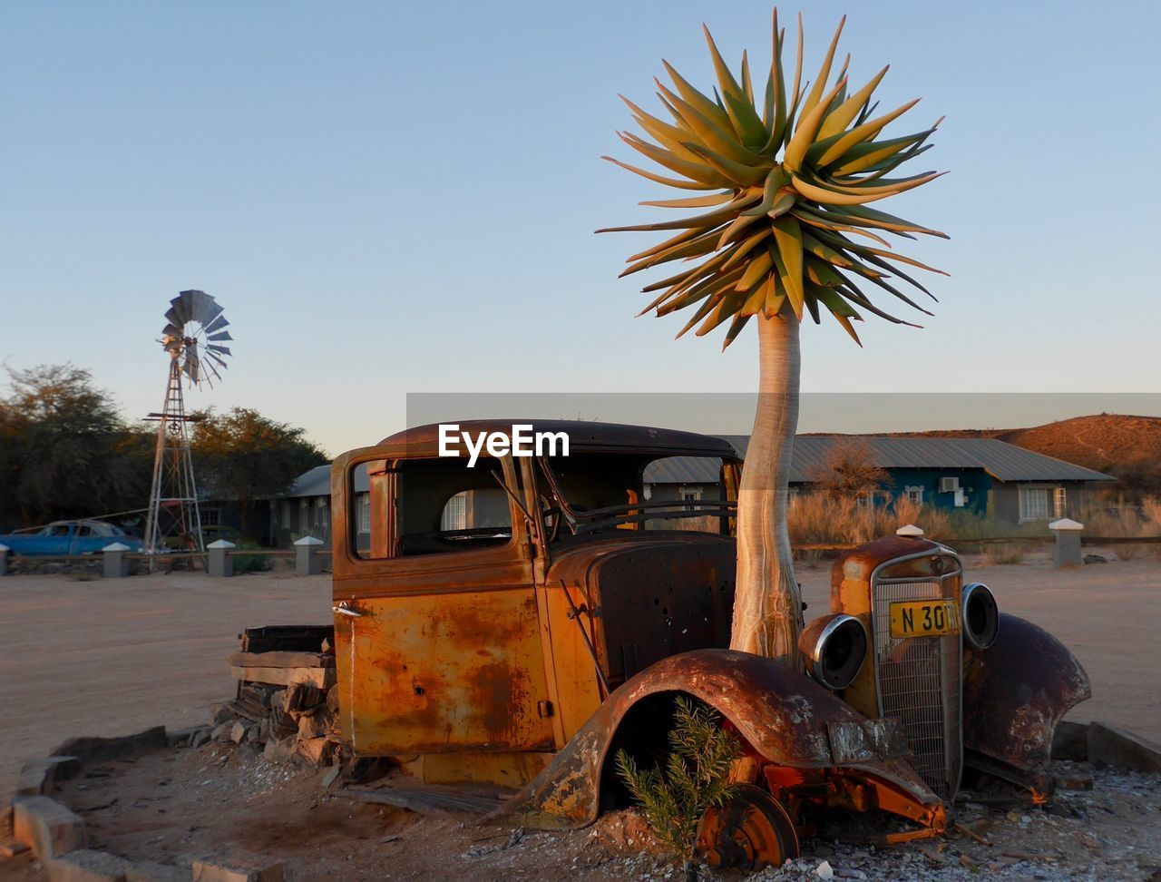 abandoned, transportation, damaged, palm tree, clear sky, no people, land vehicle, day, arid climate, sky, outdoors, nature, windmill, oil pump