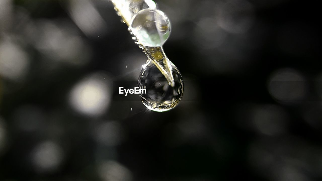 drop, focus on foreground, close-up, water, no people, fragility, nature, day, beauty in nature, outdoors, purity, freshness, dripping