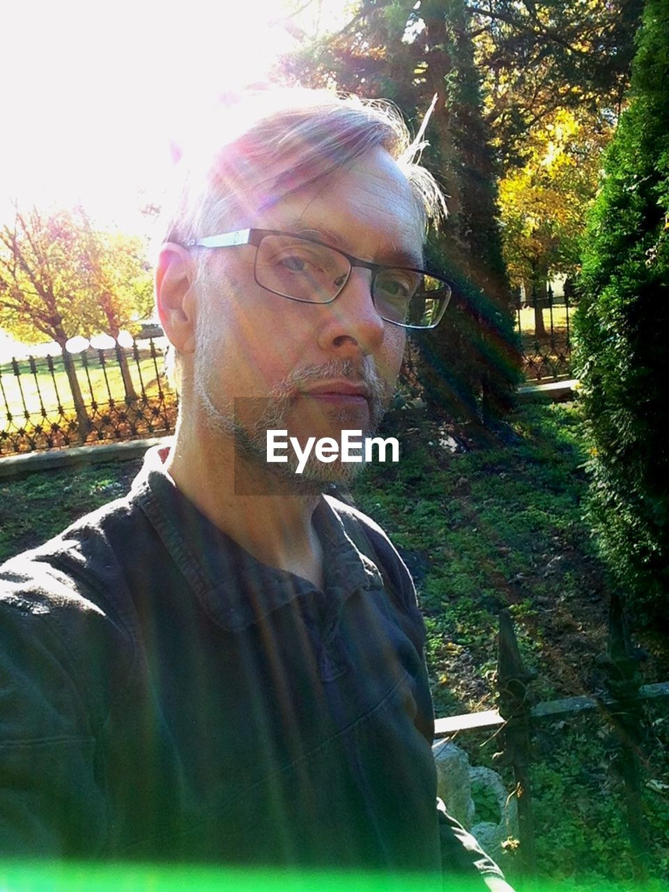 eyeglasses, real people, one person, leisure activity, serious, lifestyles, glasses, casual clothing, outdoors, sunlight, tree, day, mature men, portrait, looking at camera, beard, senior adult, mature adult, young adult, nature