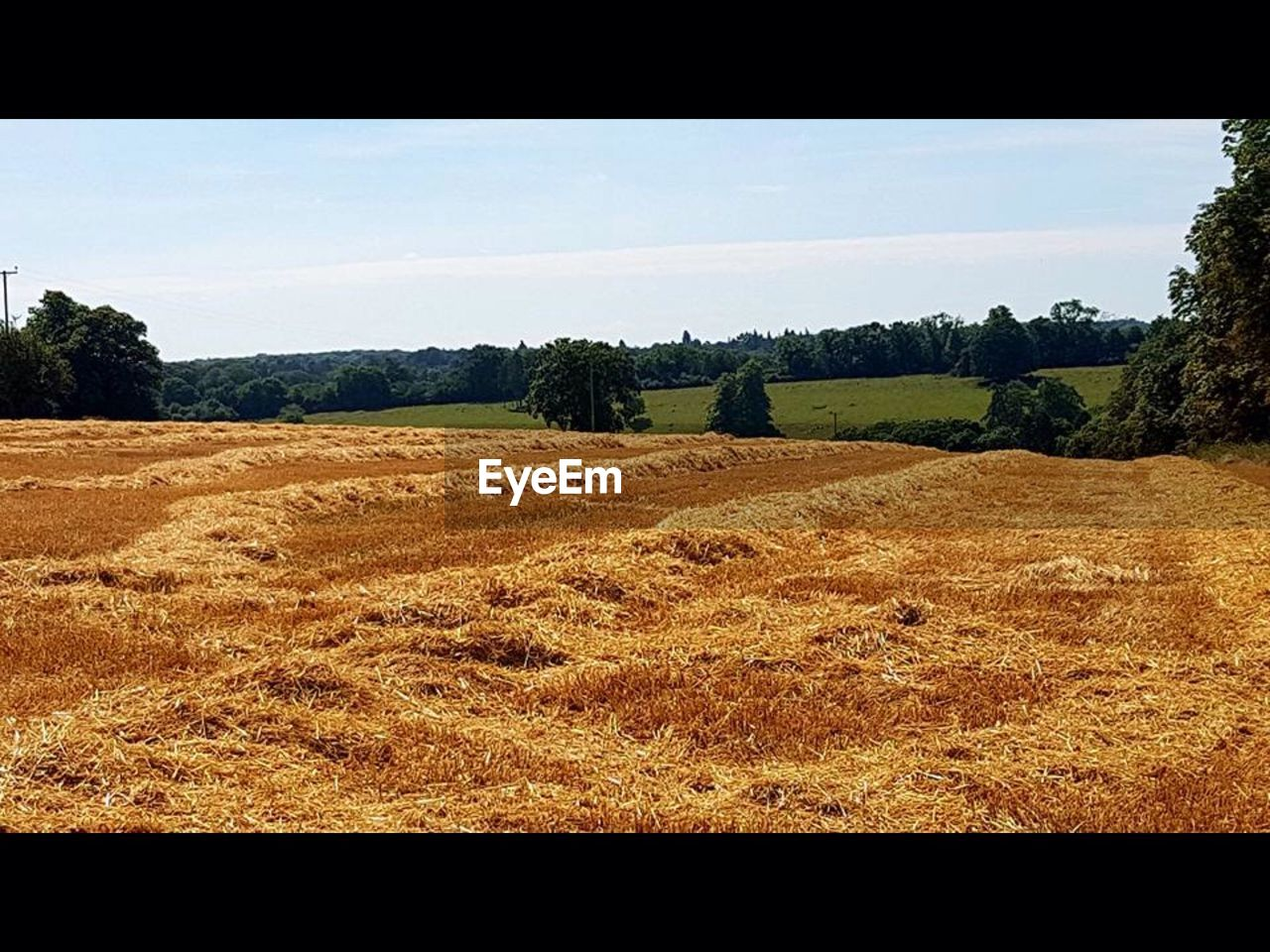 landscape, field, tranquility, tranquil scene, tree, nature, agriculture, scenics, no people, rural scene, day, hay bale, outdoors, beauty in nature, sky, grass, clear sky