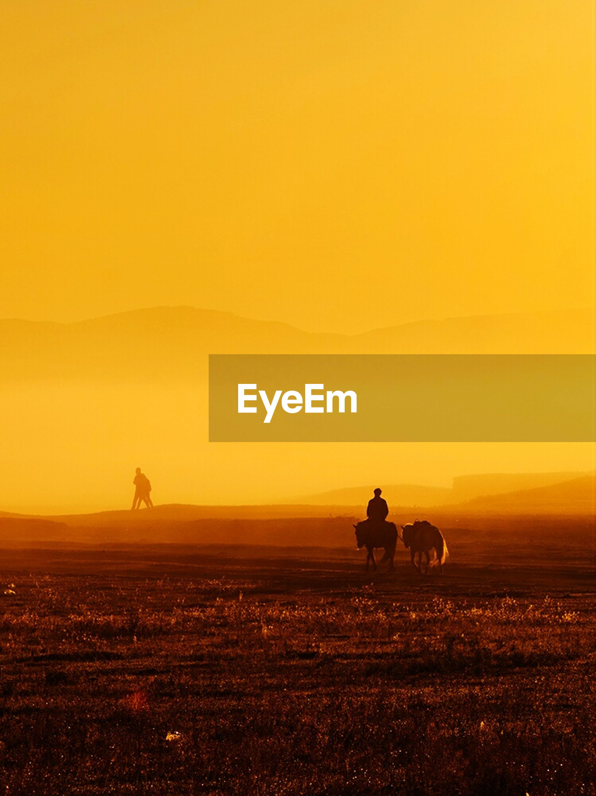 sunset, silhouette, orange color, men, copy space, scenics, tranquil scene, tranquility, sun, beauty in nature, lifestyles, leisure activity, clear sky, nature, idyllic, rear view, standing, sky
