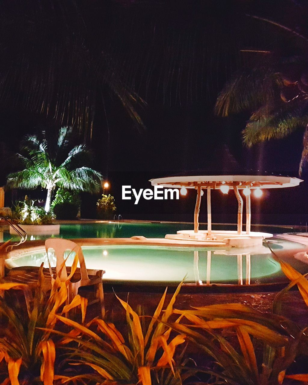 illuminated, night, water, palm tree, nature, tropical climate, tree, plant, no people, pool, swimming pool, sea, tourist resort, travel destinations, table, outdoors, leaf, reflection, architecture, palm leaf