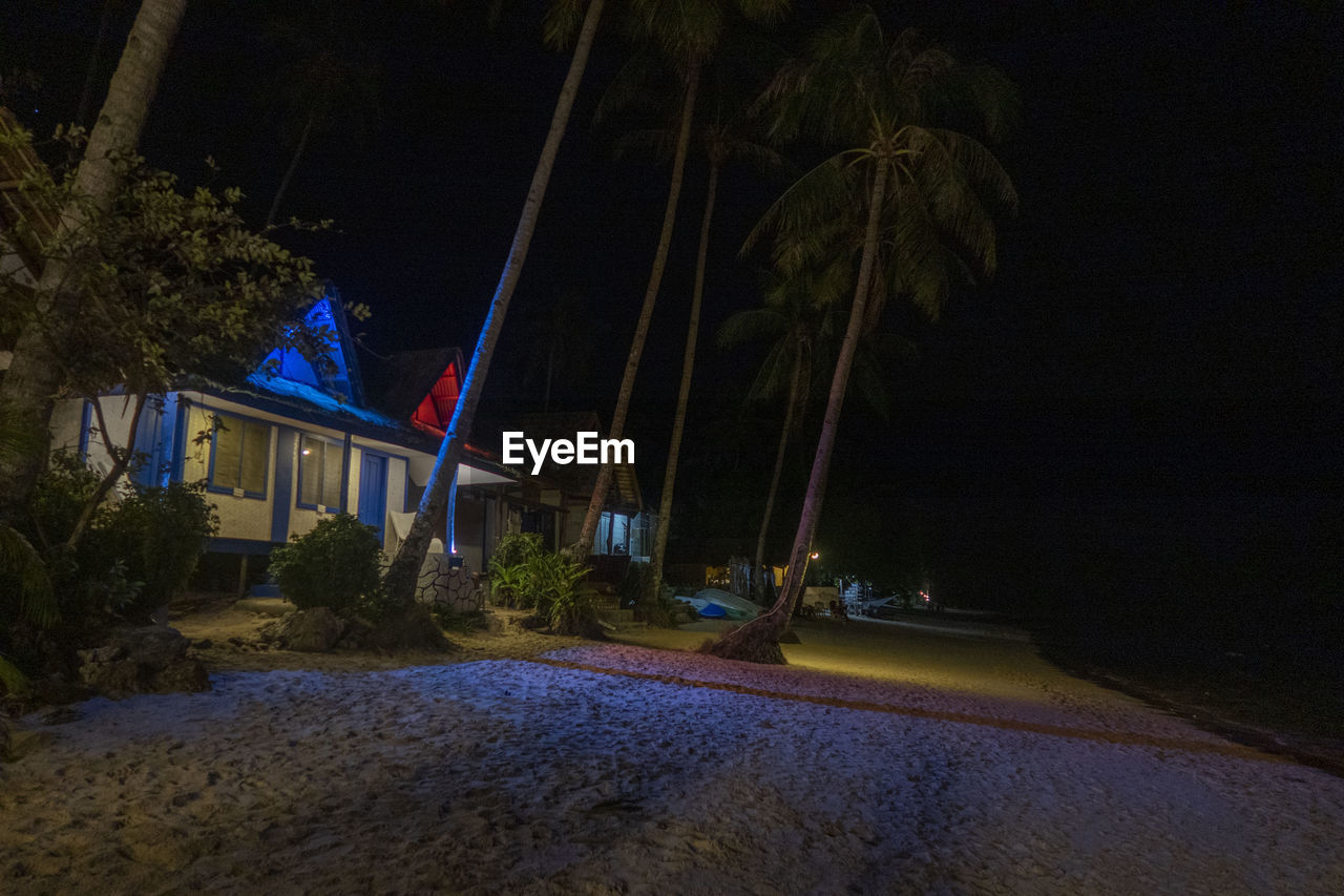 Road by palm trees and houses against sky at night
