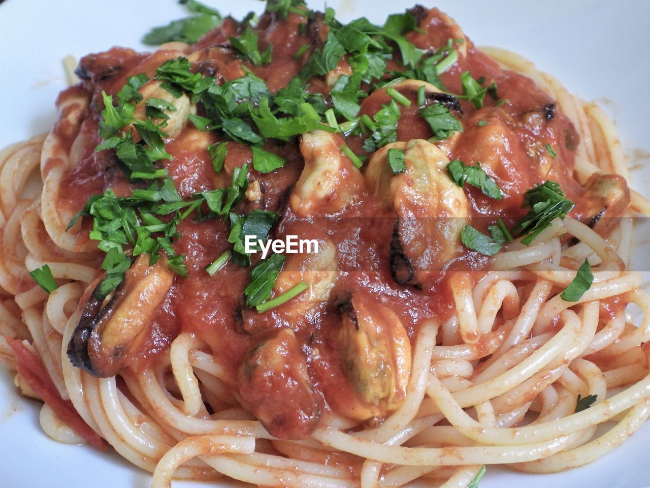 food, ready-to-eat, food and drink, freshness, close-up, italian food, pasta, plate, meat, indoors, meal, still life, wellbeing, healthy eating, indulgence, serving size, no people, garnish, spaghetti, vegetable, herb, crockery, temptation, dinner, tomato sauce, coriander
