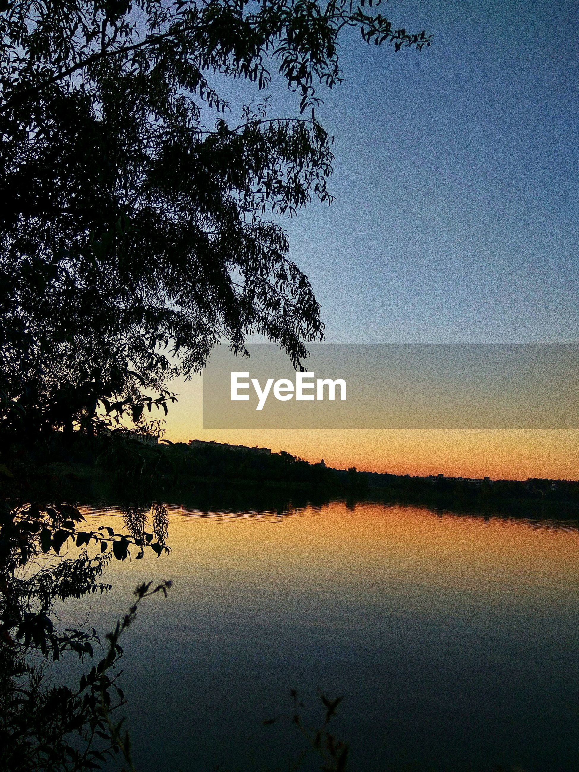 reflection, tree, nature, beauty in nature, water, lake, scenics, tranquil scene, sunset, tranquility, silhouette, sky, outdoors, no people, growth, clear sky, day