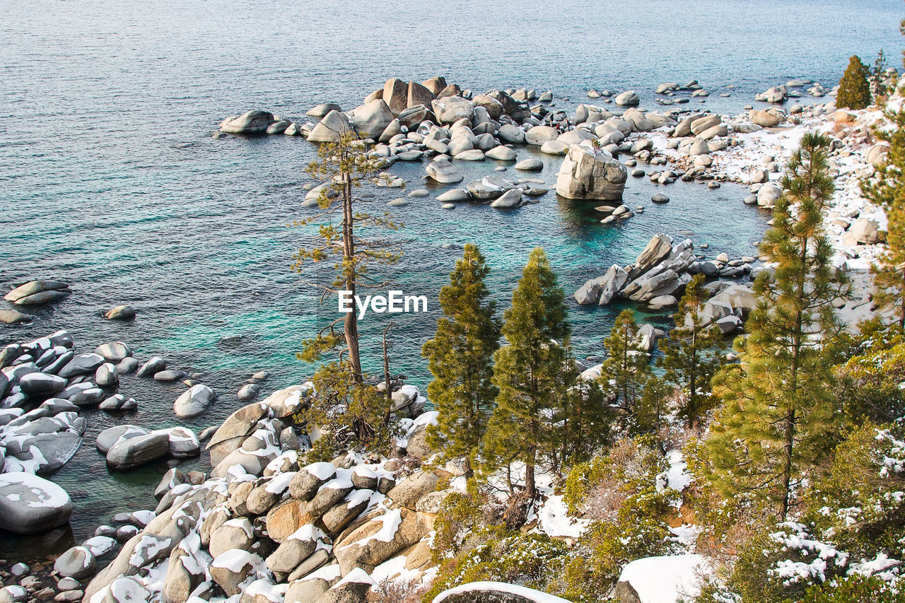 water, rock, solid, sea, rock - object, nature, beauty in nature, day, beach, land, no people, tranquility, scenics - nature, tranquil scene, high angle view, outdoors, plant, animal wildlife, rock formation, rocky coastline