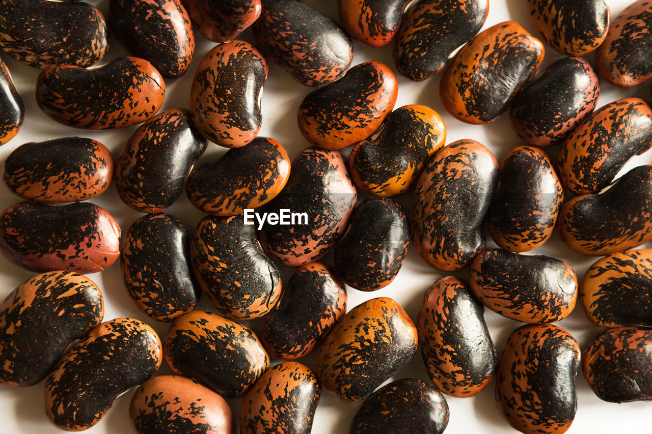 Red and black spotted beans close-up. the pattern of the haricot, background, texture.