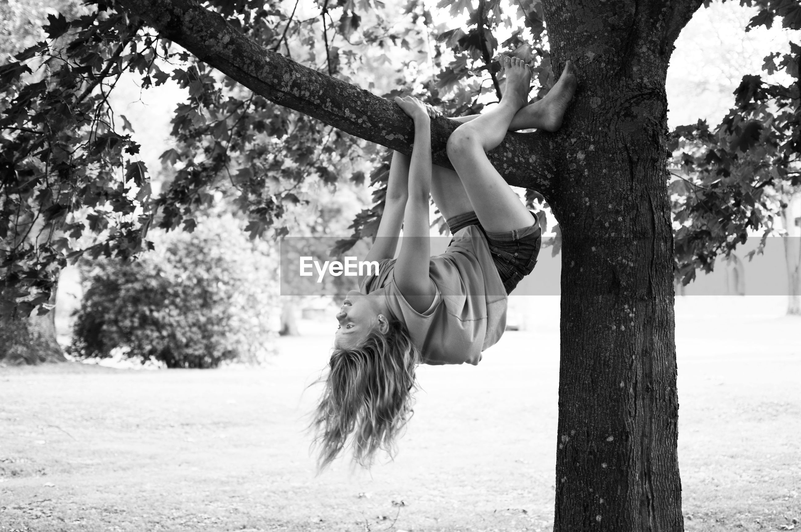 Full length of girl hanging on tree