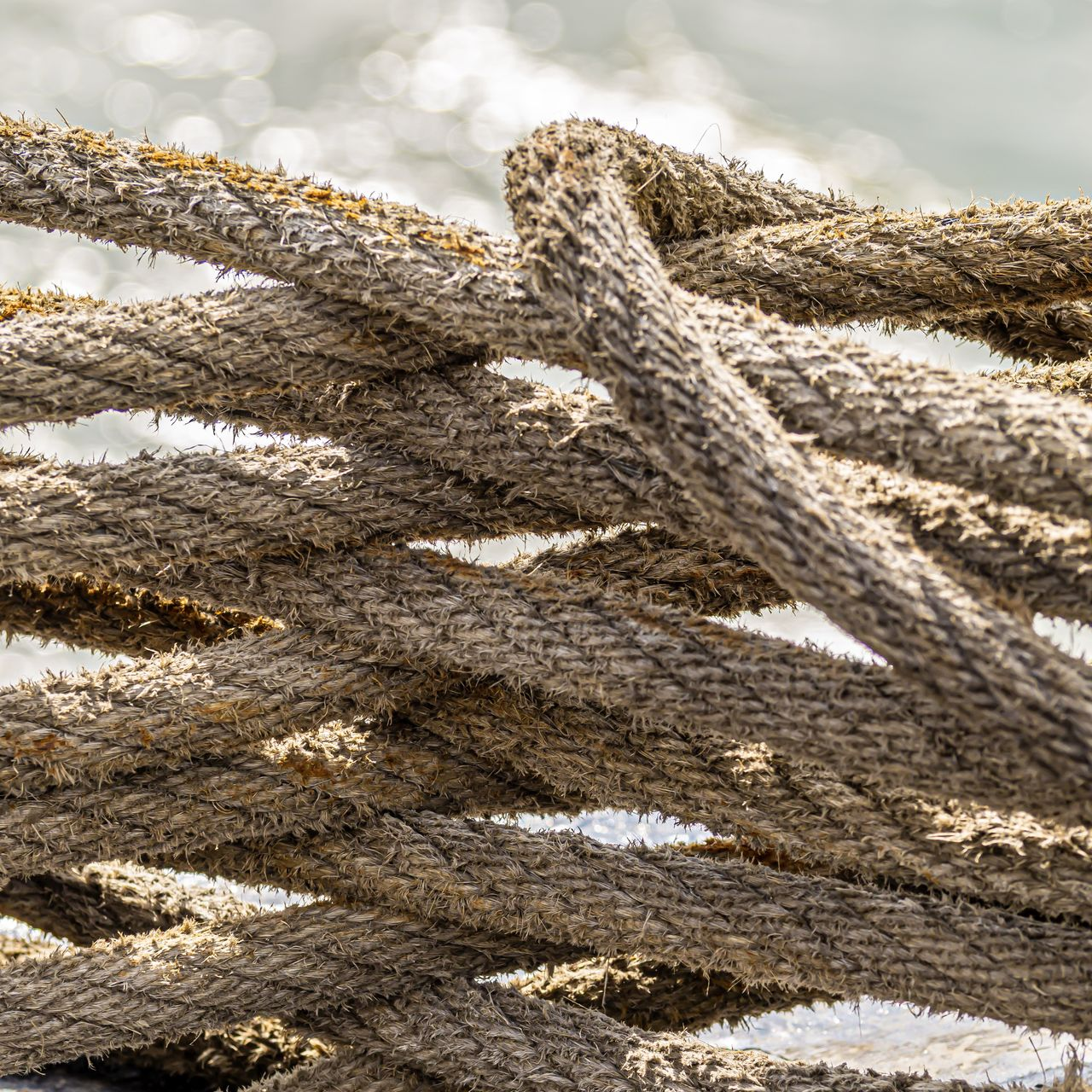 rope, no people, day, close-up, strength, pattern, focus on foreground, nature, textured, outdoors, tied up, land, tangled, brown, twisted, still life, equipment, water, connection, wood - material, complexity