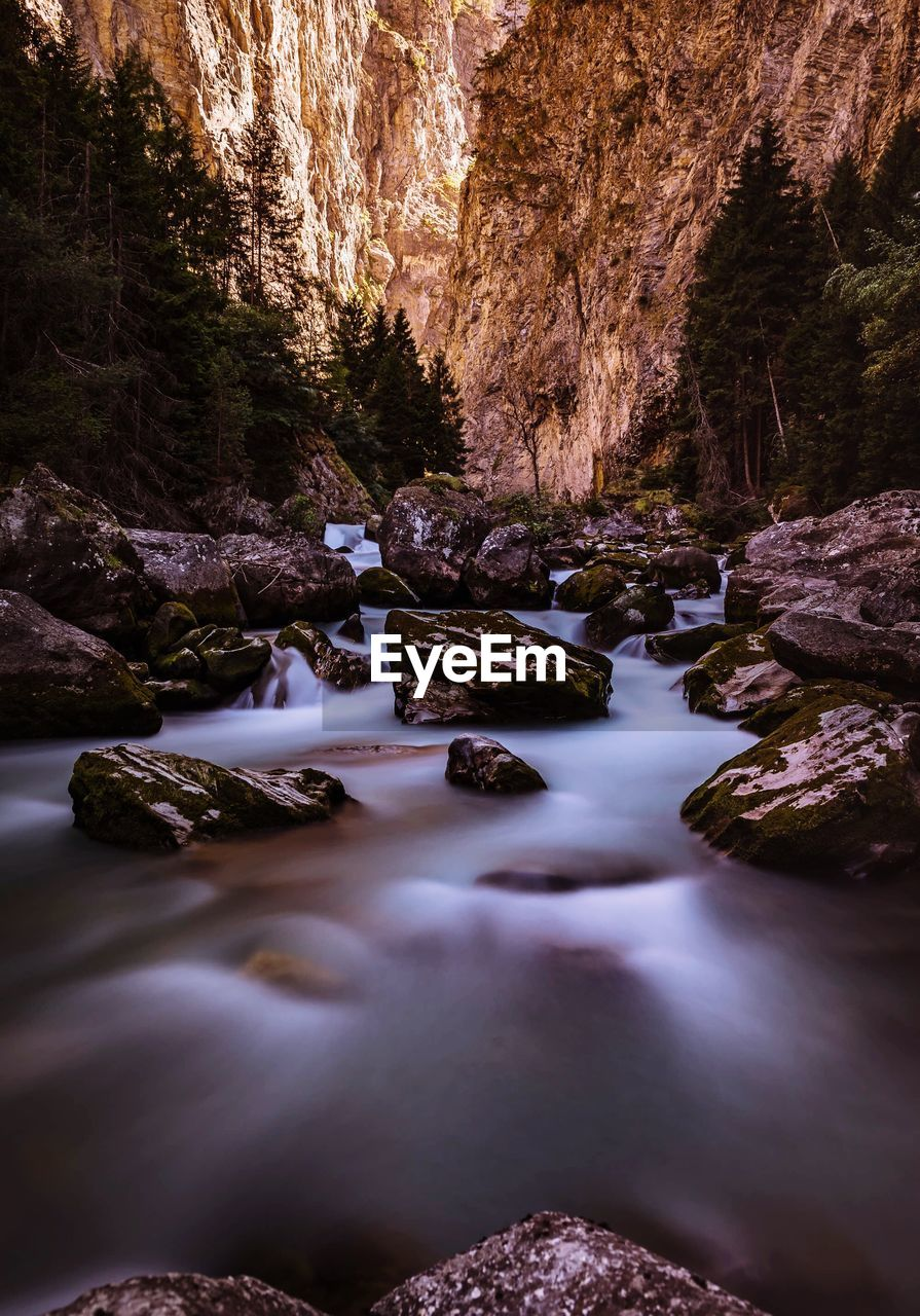 water, rock, beauty in nature, rock - object, solid, scenics - nature, tranquility, tranquil scene, no people, nature, rock formation, land, forest, tree, non-urban scene, day, idyllic, motion, long exposure, flowing water, outdoors, flowing, stream - flowing water, eroded
