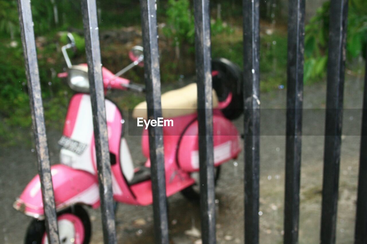 day, animal, transportation, animal themes, no people, focus on foreground, metal, mammal, outdoors, domestic animals, mode of transportation, one animal, vertebrate, pink color, domestic, nature, pets, dog, hanging, railing, wheel