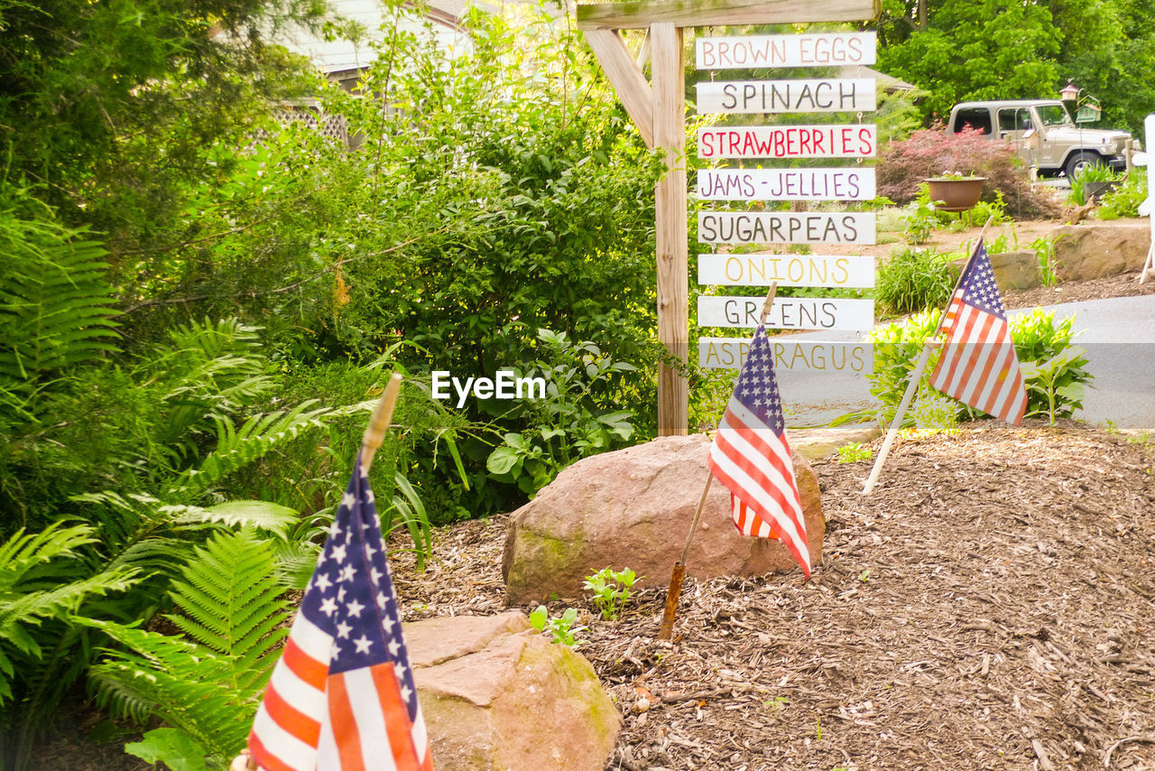 patriotism, flag, striped, stars and stripes, pride, national icon, freedom, independence, day, outdoors, democracy, no people, tree, voting, nature, camouflage clothing, close-up