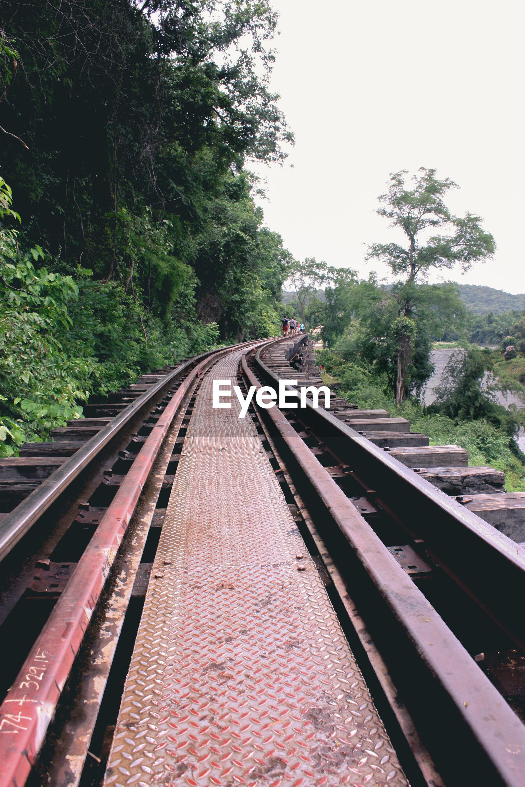 Railway tracks amidst trees against clear sky