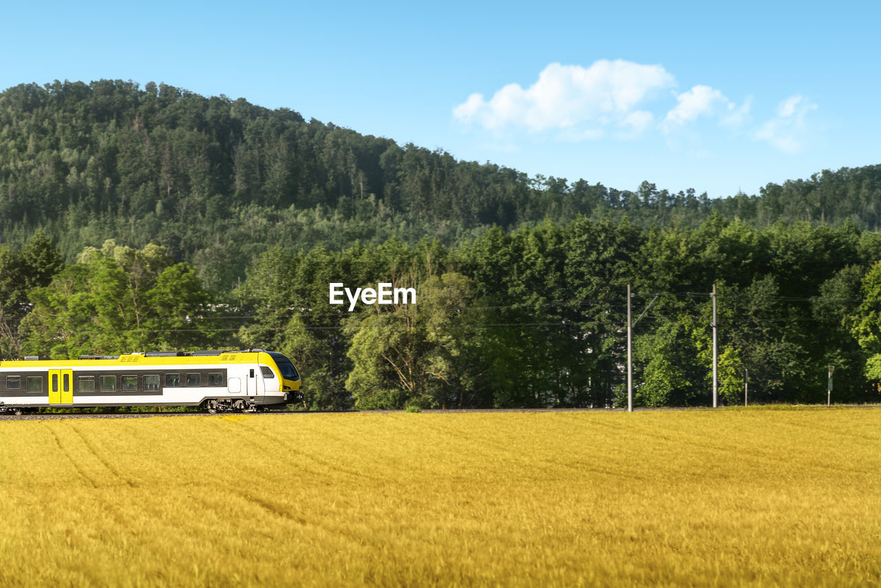 Train traveling through agricultural fields and forest, at sunrise, in schwabisch hall germany.