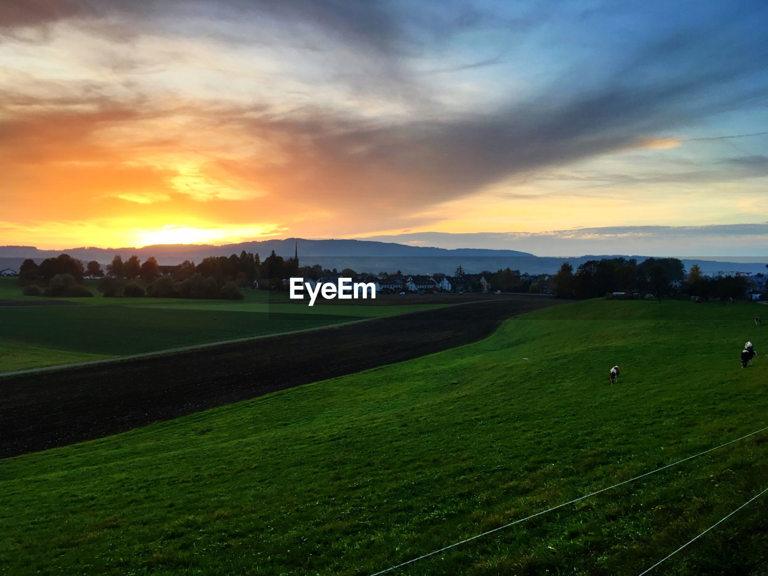 tranquil scene, landscape, sunset, scenics, tranquility, field, beauty in nature, rural scene, agriculture, grass, cloud - sky, green color, dusk, farm, crop, cultivated land, growth, nature, sky, cloudy, dramatic sky, non-urban scene, grassy, outdoors, atmospheric mood, mountain range, mountain, sun