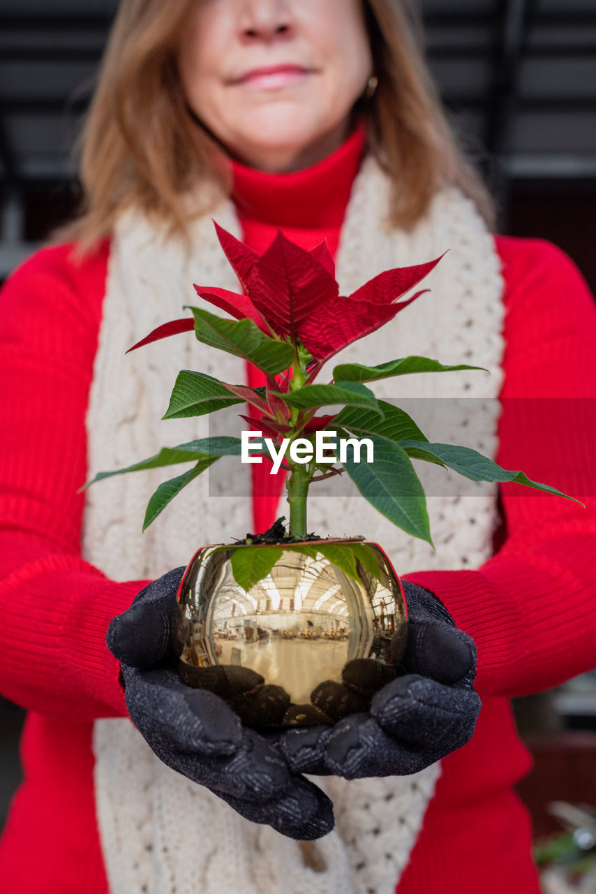Midsection of woman holding poinsettia plant while standing outdoors