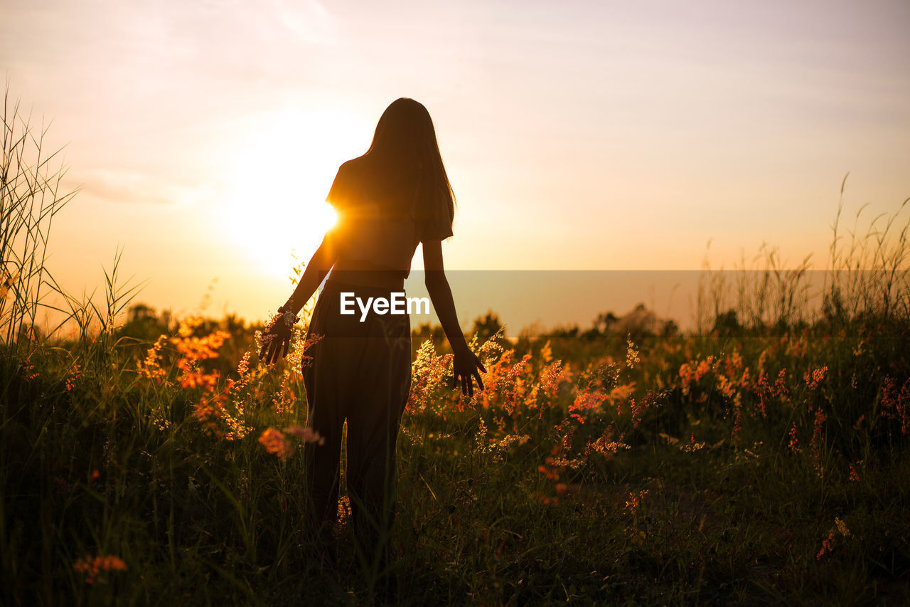 Young woman walking in spring field at sunset among fresh grass and touching yellow flowers.