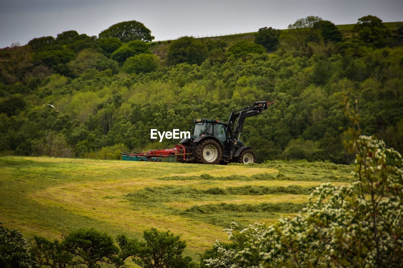 plant, tree, green color, land, transportation, land vehicle, nature, field, grass, mode of transportation, growth, day, landscape, environment, agricultural equipment, agricultural machinery, beauty in nature, no people, scenics - nature, tractor, outdoors