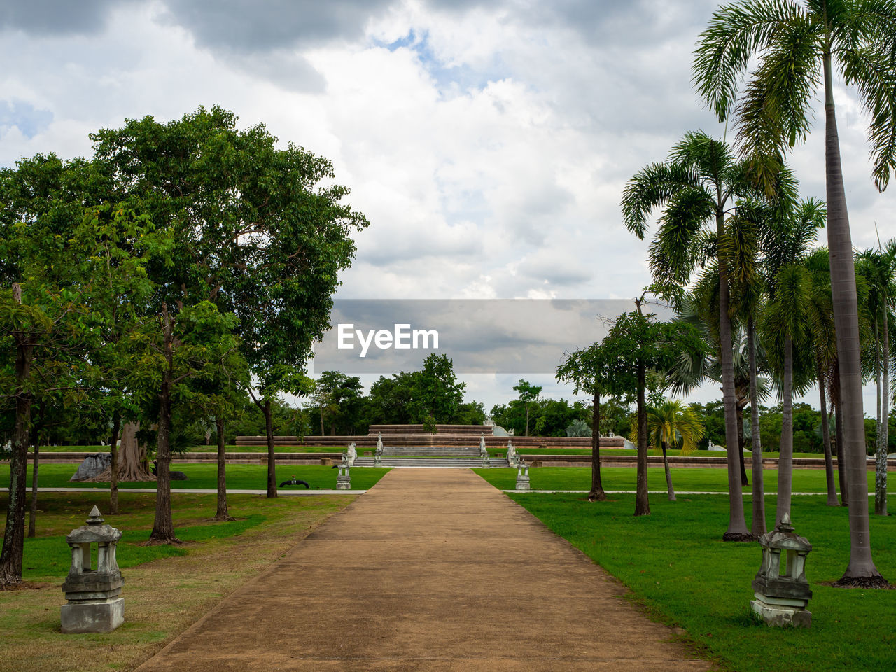 tree, cloud - sky, plant, sky, nature, the way forward, direction, day, no people, grass, footpath, palm tree, green color, beauty in nature, growth, tranquility, park, tranquil scene, tropical climate, scenics - nature, outdoors, diminishing perspective, treelined