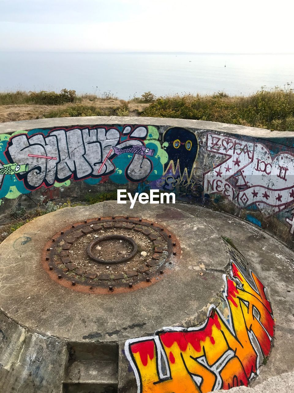 graffiti, creativity, art and craft, multi colored, no people, day, railing, water, representation, outdoors, nature, sky, wall, street art, sea, architecture, text, metal, grass