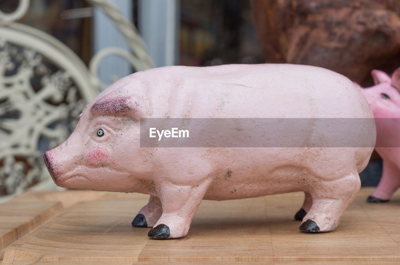 animal, mammal, animal themes, pig, representation, close-up, animal representation, no people, domestic animals, focus on foreground, one animal, pink color, indoors, livestock, table, domestic, pets, side view, vertebrate, still life