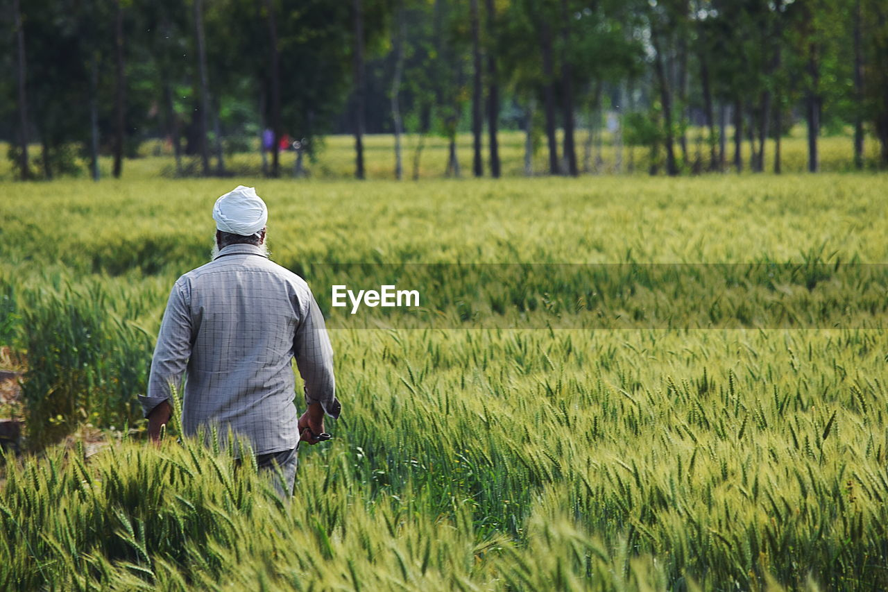 Rear View Of Farmer Walking In Agricultural Field