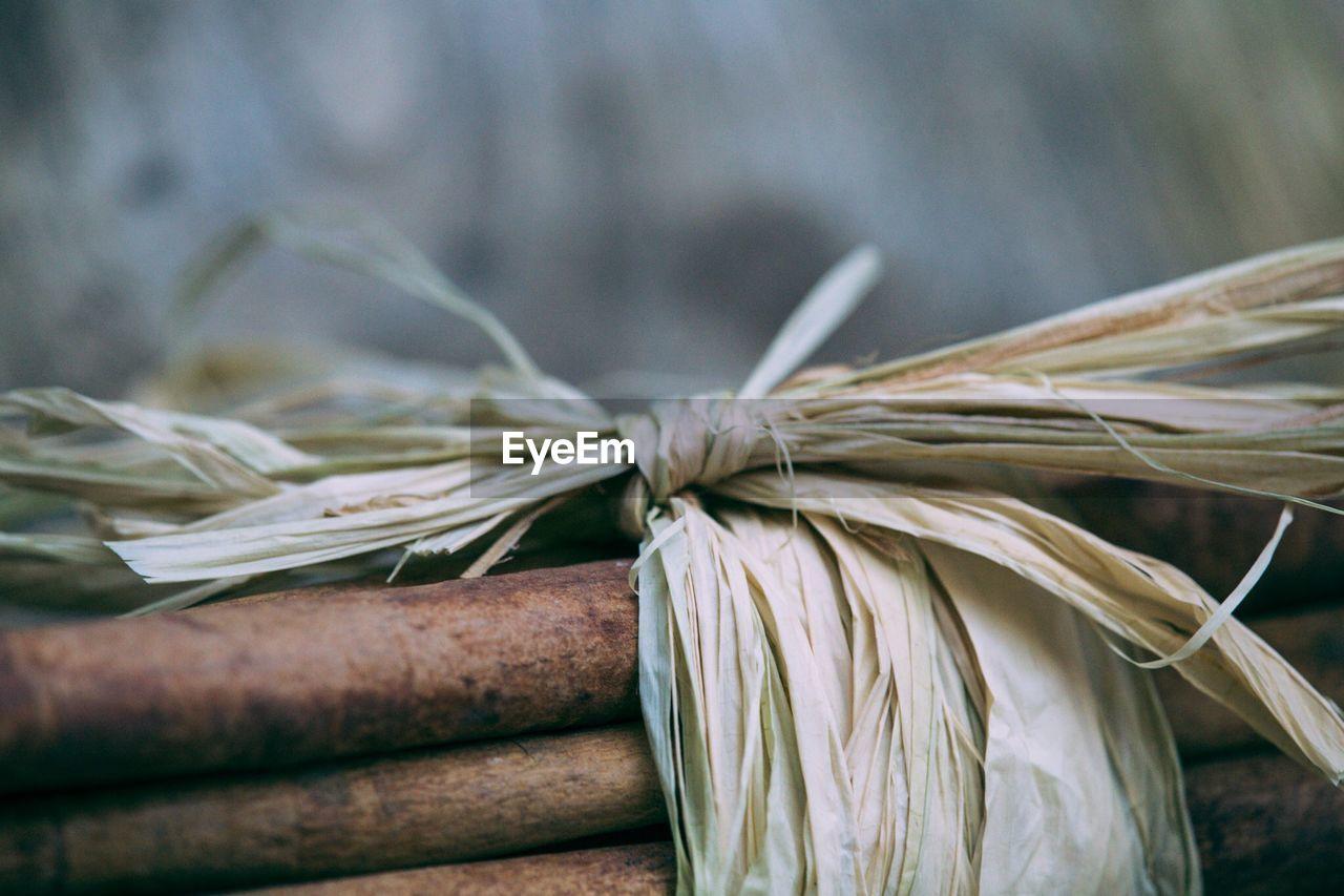 Close-Up Of Cinnamon Bundle