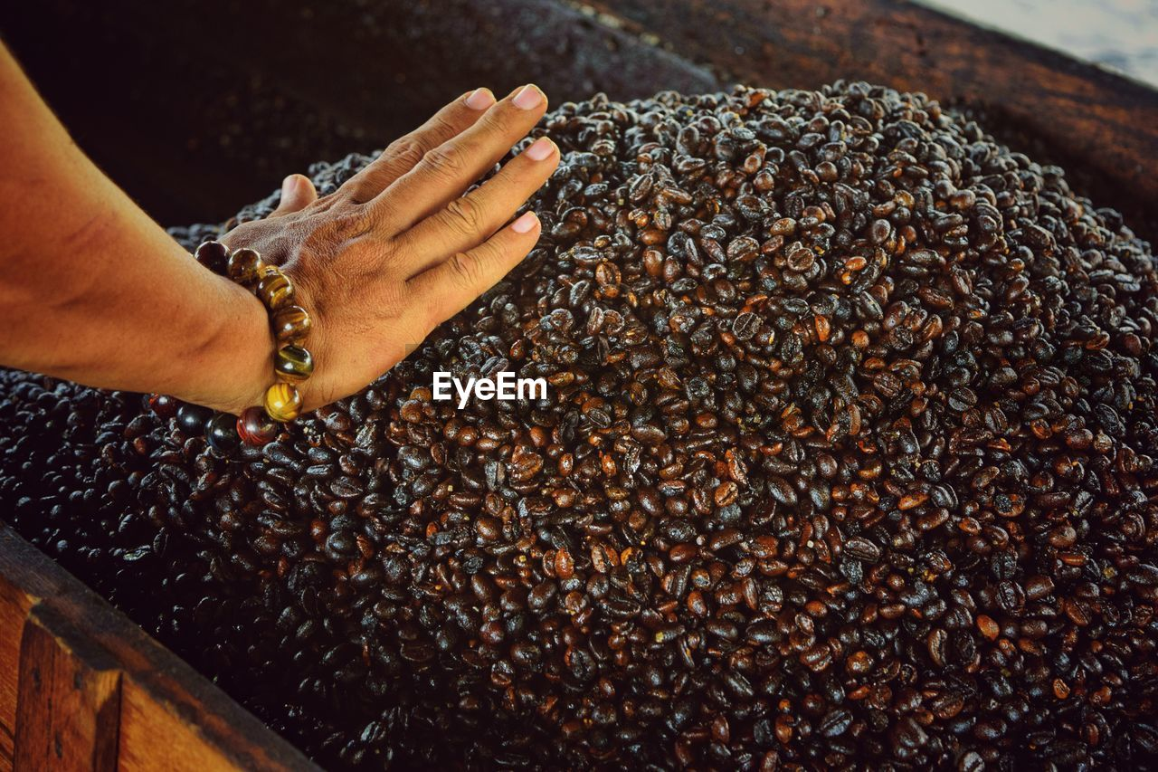 Cropped Hand Of Woman Touching Coffee Beans