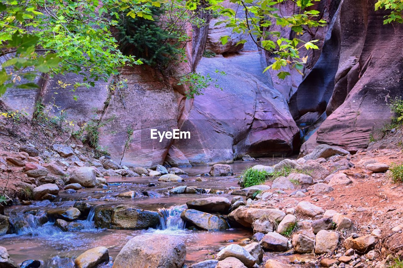 rock, solid, rock - object, beauty in nature, nature, plant, water, rock formation, no people, tree, tranquility, day, growth, land, forest, non-urban scene, outdoors, remote, tranquil scene, flowing water, flowing, eroded, formation