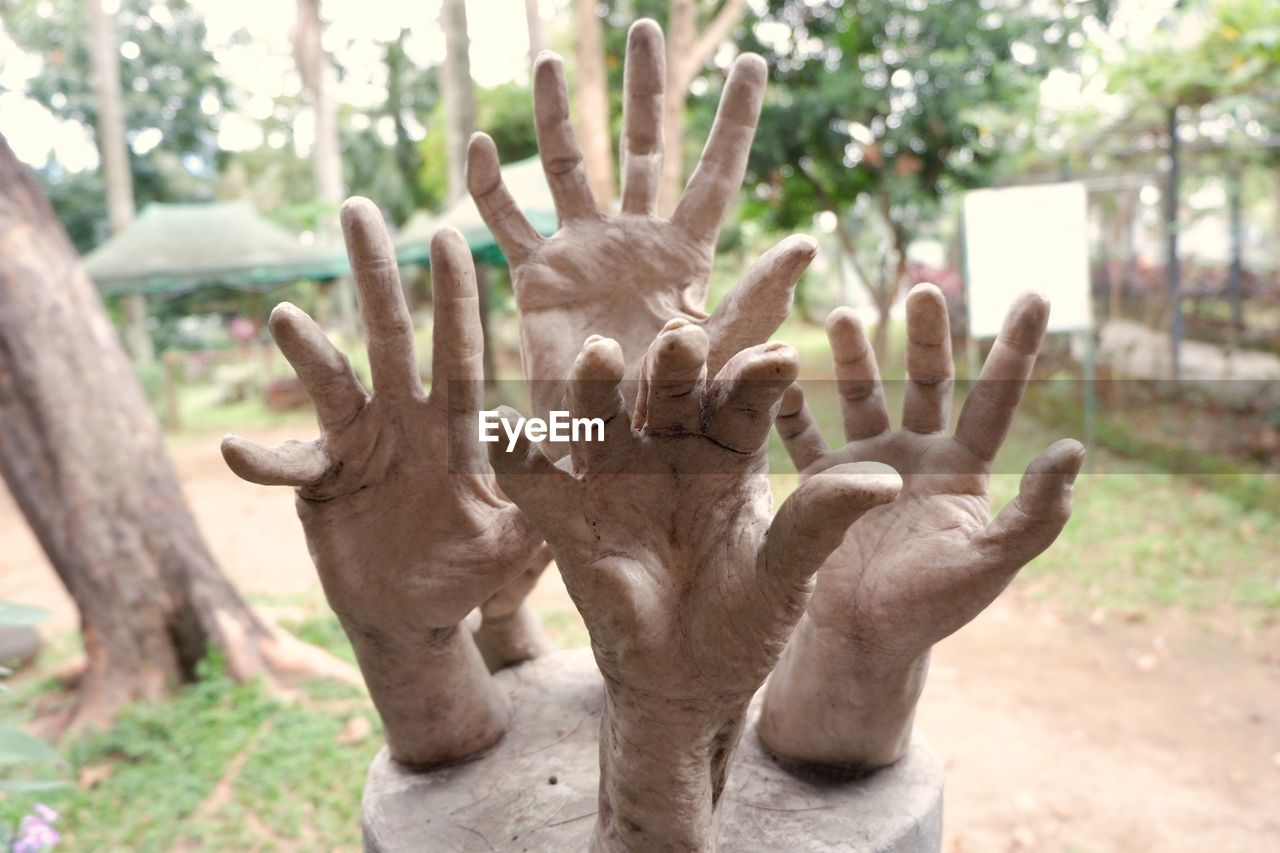 human hand, human body part, close-up, focus on foreground, day, outdoors, palm, one person, people