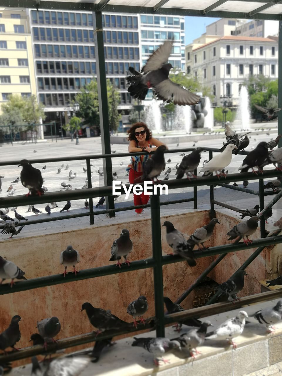 Portrait of woman standing by railing with pigeons