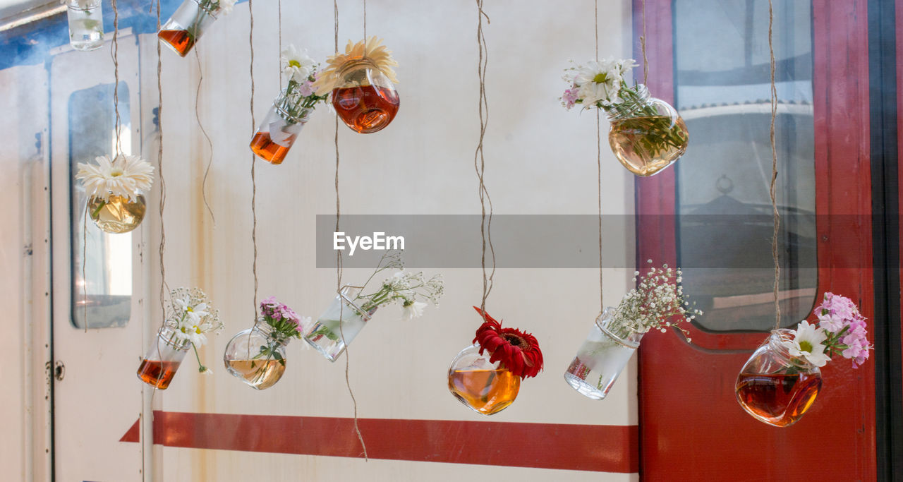 decoration, plant, flower, hanging, flowering plant, no people, indoors, vase, transparent, nature, glass - material, creativity, potted plant, day, art and craft, window, celebration, freshness, flower pot, flower arrangement