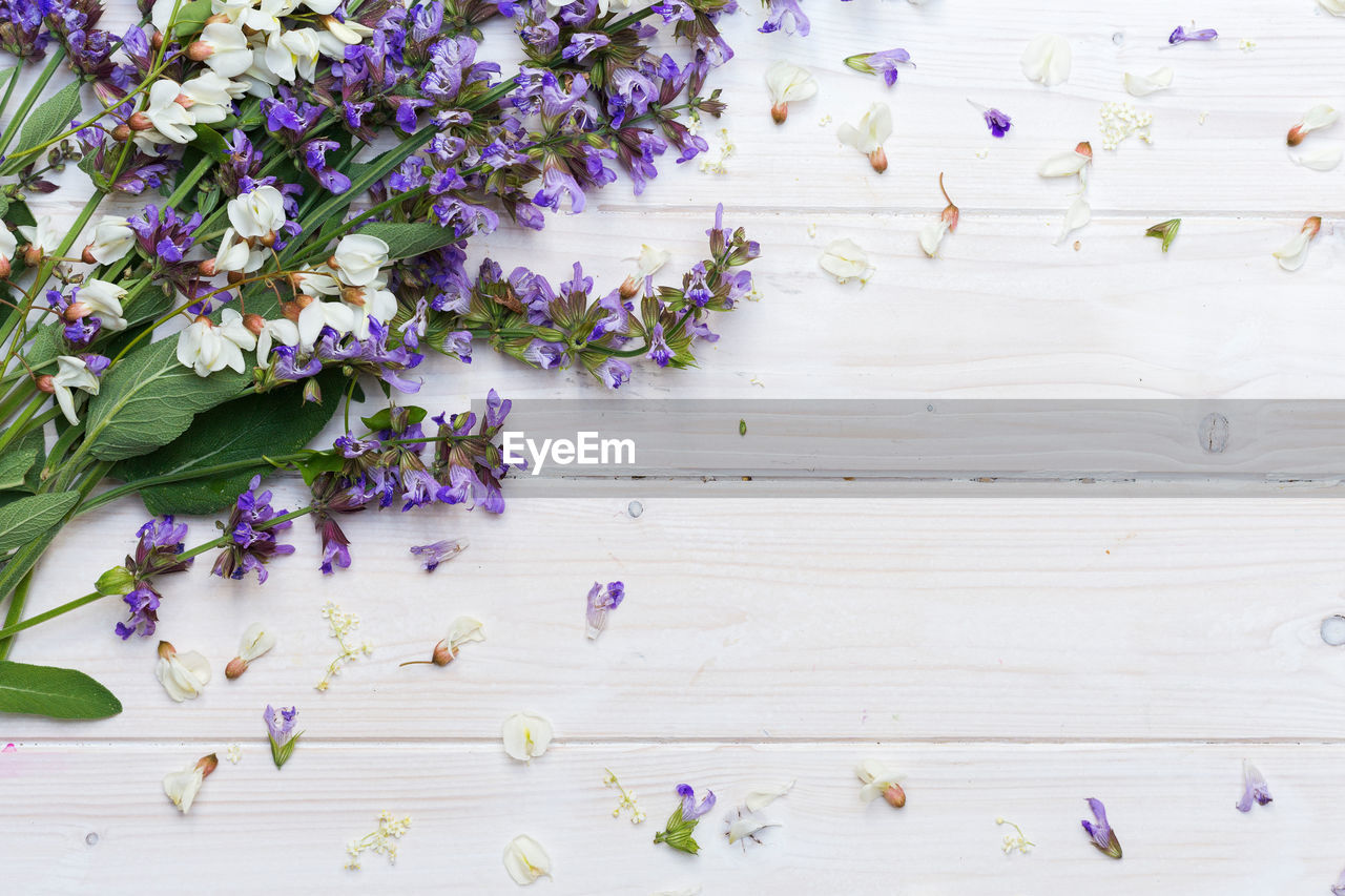 flower, flowering plant, plant, vulnerability, fragility, freshness, beauty in nature, nature, purple, indoors, close-up, wood - material, petal, table, multi colored, growth, no people, decoration, high angle view, flower head, leaves