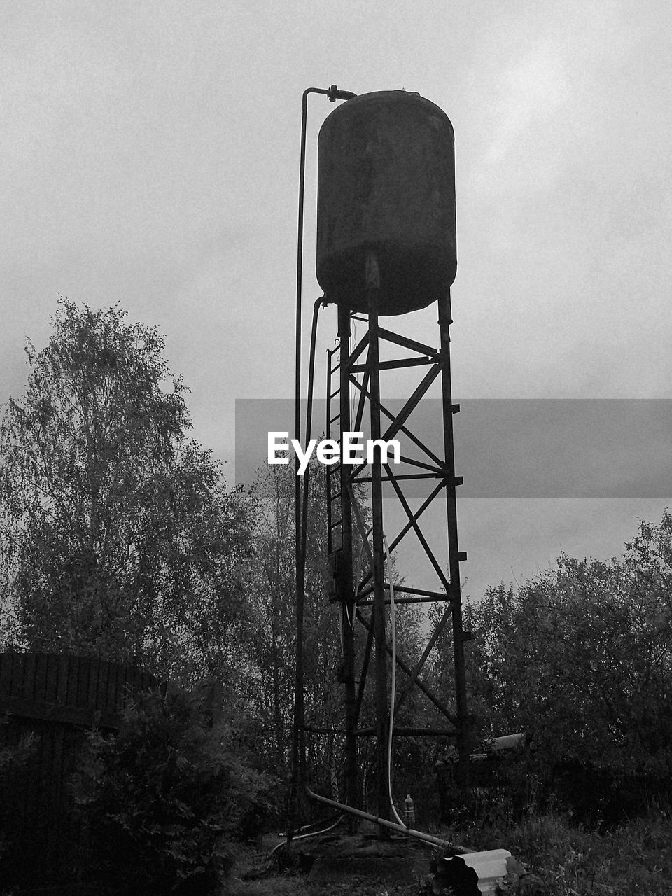 tree, storage tank, water tower - storage tank, day, sky, water tank, built structure, no people, low angle view, outdoors, architecture, nature